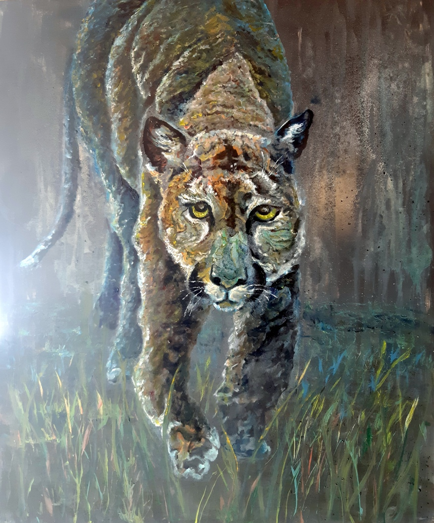 cougar201928229