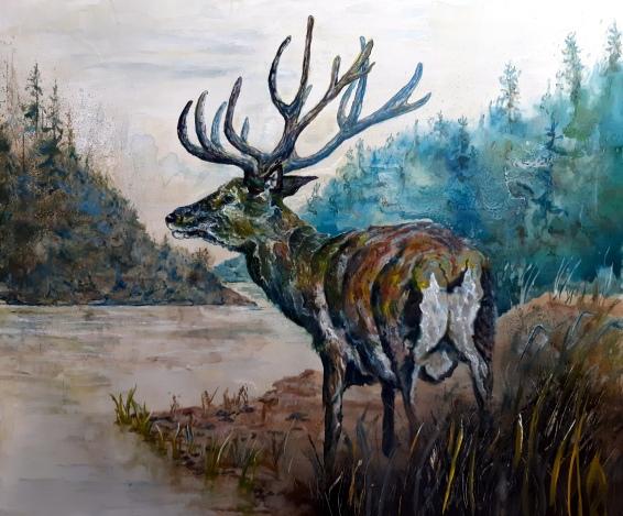 Deer 2019 (2)