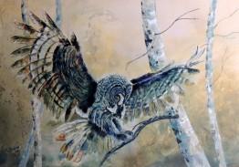 owl 2018 (5)