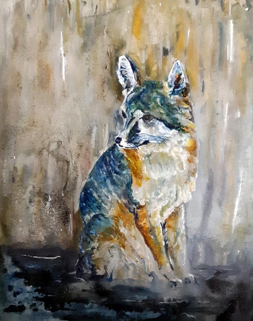 Grey Fox 2019 (2)